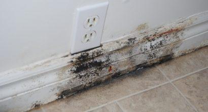 Family Living with Toxic Mould